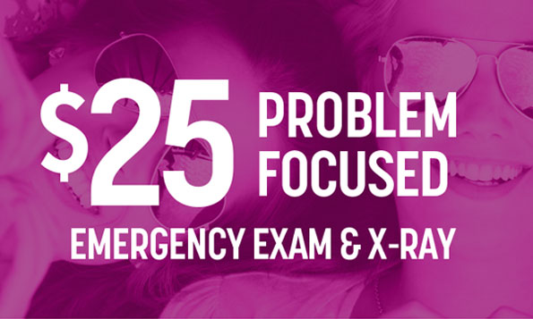 $25 problem focused emergency exam and x-ray Lovett Dental special offers